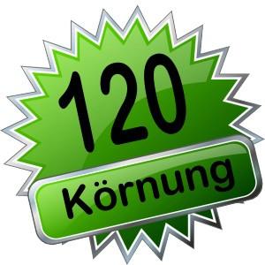 Kurzbänder P120